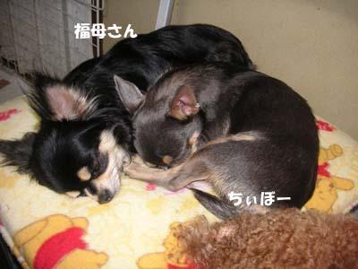 Photos: 仲良し親子