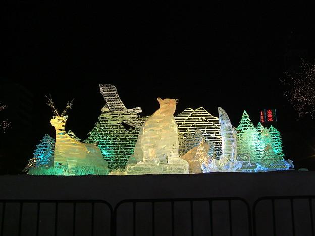 写真: 道新氷の広場2008 (1)