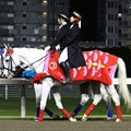写真: 川崎競馬の誘導馬05月開催 重賞Ver-120516-02-large