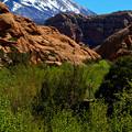 Photos: 新緑とRed Rockと冠雪と。。