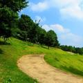Photos: 丘の道