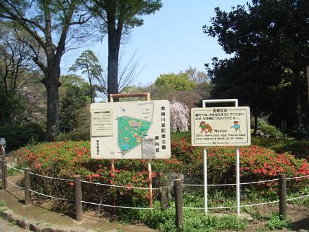 2008-04-06_002