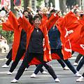 写真: 朝霞なるこ遊和会_彩夏祭2008_25