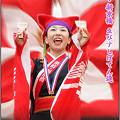 """写真: 京町・新京橋""""ゑびすしばてん連""""_スーパーよさこい2008_04"""