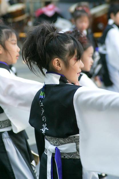 写真: 江戸の華_池袋チャリティーよさこい-06