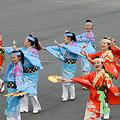 写真: 原宿よさこい連_東京大マラソン祭り2008_34
