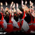 """写真: 早稲田大学 """"踊り侍""""_東京大マラソン祭り2008_bf1"""