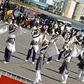 写真: 国士舞双_東京大マラソン祭り2008_13