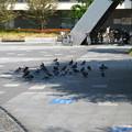 Photos: 岐阜駅前-暑いから日陰へ