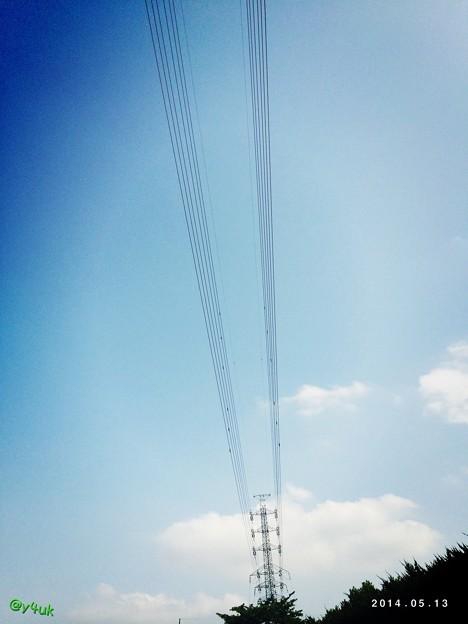 Photos: 新緑の向こうの鉄塔へ
