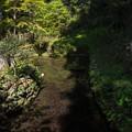 Photos: 日本名水百選 清水湧水
