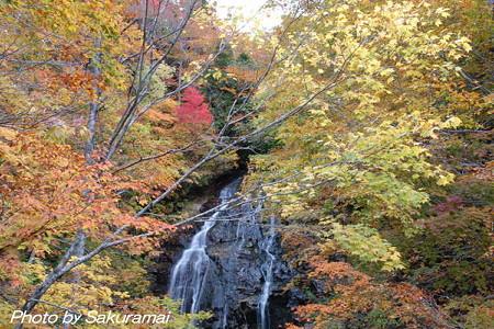 紅葉と小さな滝