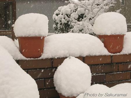 雪のフラワーポット