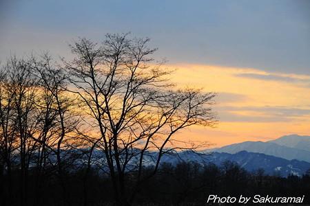 師走の夕陽