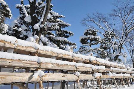 雪囲いと青空