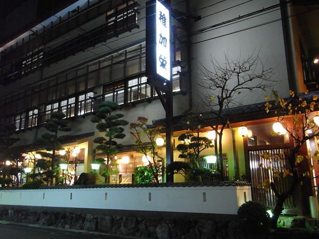 博多22 博多料理 稚加榮 (夜はこんな感じ)
