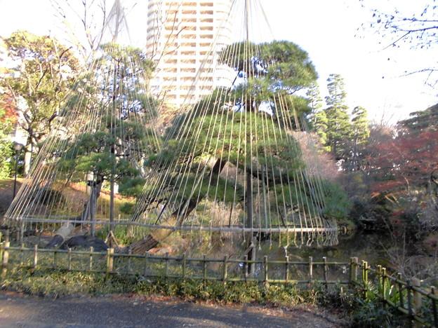 都電荒川線_早稲田駅界隈(早大側):甘泉園公園-05