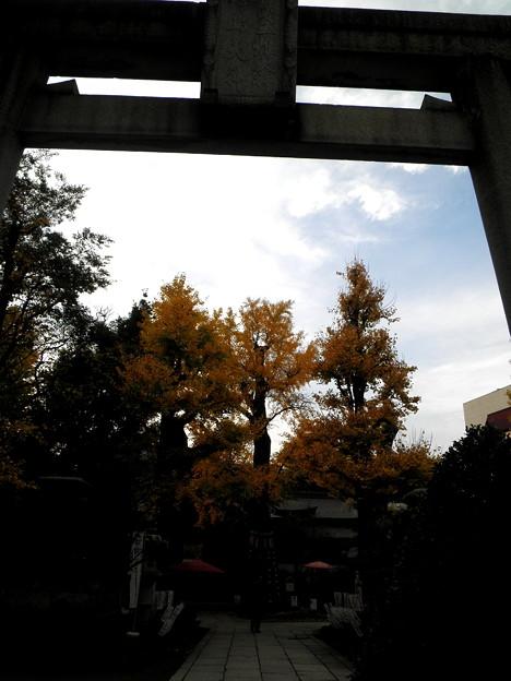 素盞雄神社-02b