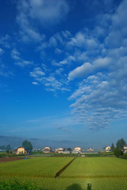 自分も写っている朝雲