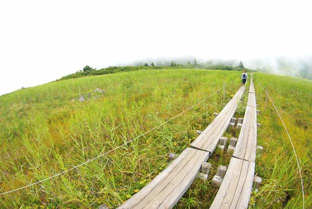 霧の中へ~栗駒国定公園