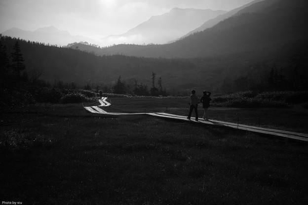 写真: 栂池自然公園木道