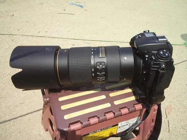 D300+MB-D10+AF-S NIKKOR 80-400mmf/4.5-5.6G ED VR