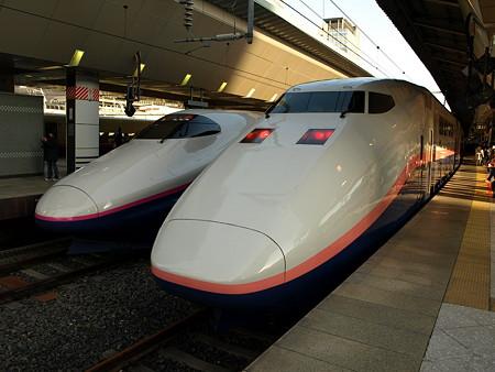 E2系(1000番台)(左)とE1系MAXのツーショット