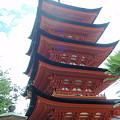 写真: 厳島神社の五重塔