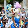 Photos: DSC_0001