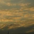 Photos: 黄色みを帯びた夕焼け雲