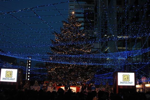 フジテレビ広場の彩るツリー