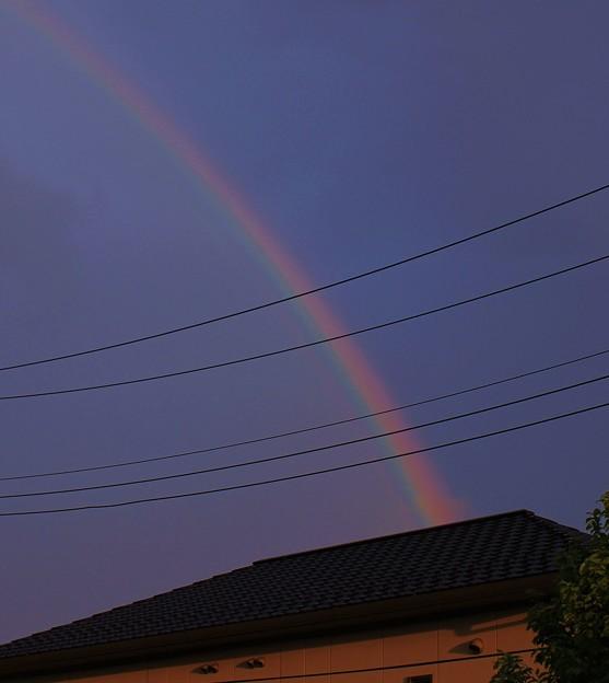 虹・・雨上がり   1