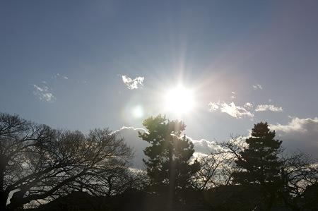 日差しがまぶしい