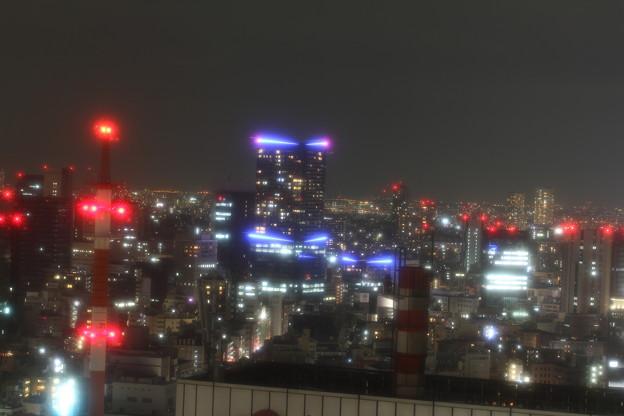 窓からの景色 7 5月1日 プロ ソフトン-A使用