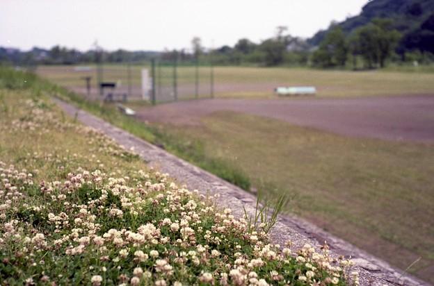 写真: 201205-04-019PZ