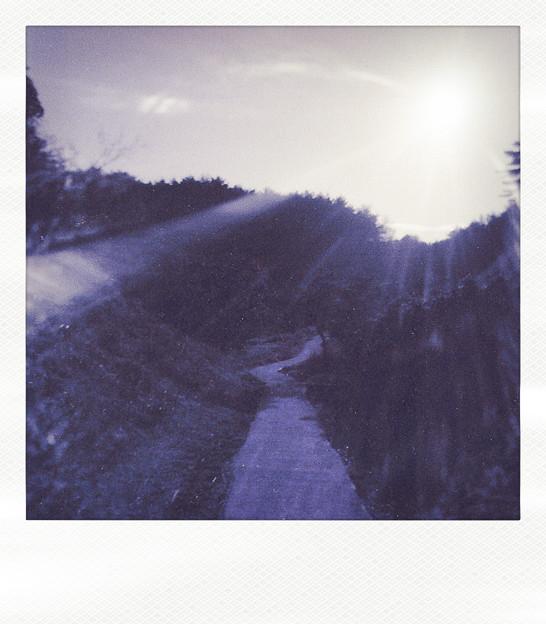 道はあまねく照らされる