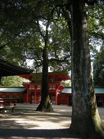 氷川神社(さいたま市)・楼門