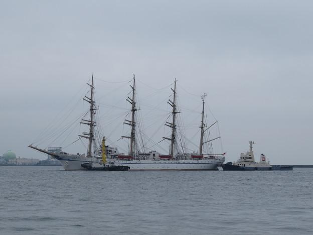 帆船日本丸入港