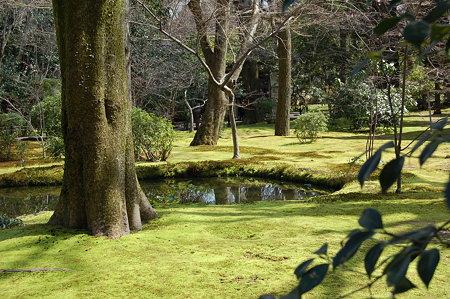 京都特別公開 129