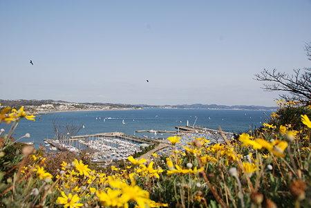 江ノ島のサムエル・コッキング苑から見た風景