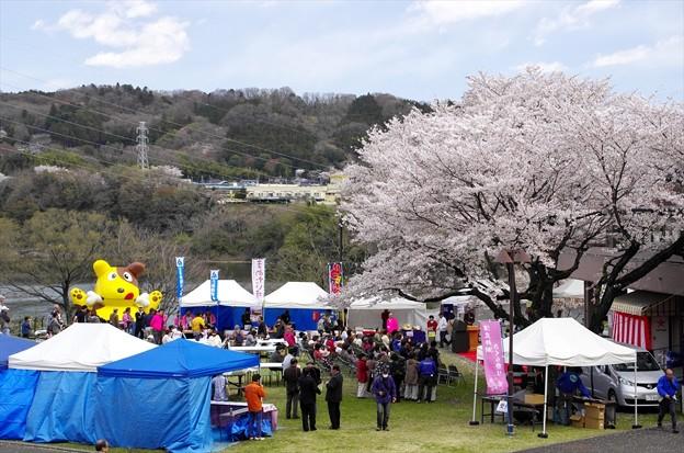 津久井湖さくら祭り02「人盛り花盛り」