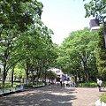 Photos: 初夏の東京競馬場東門付近