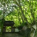 大威徳寺1