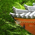大威徳寺3