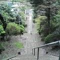 Photos: 清水寺の最上より街道を臨む