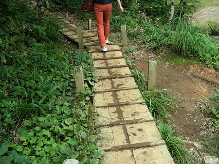木の板で作った歩道