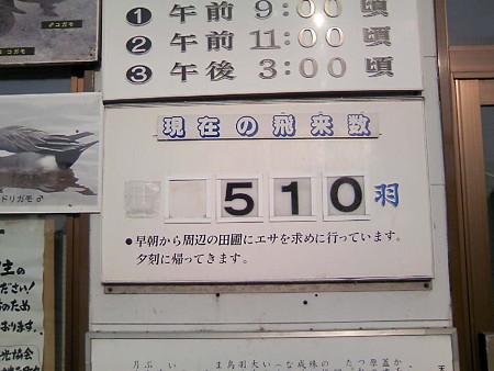 10月16日現在の飛来数