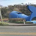 写真: 鯨波交差点-クジラ