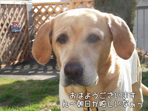 s-myu2008_1219(002)