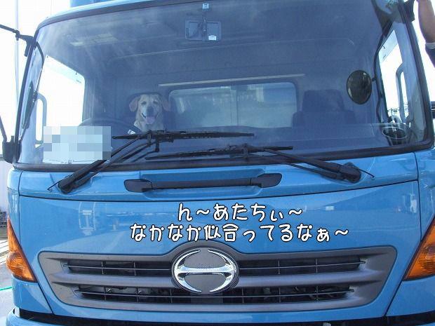 s-myu2008_1220(071)